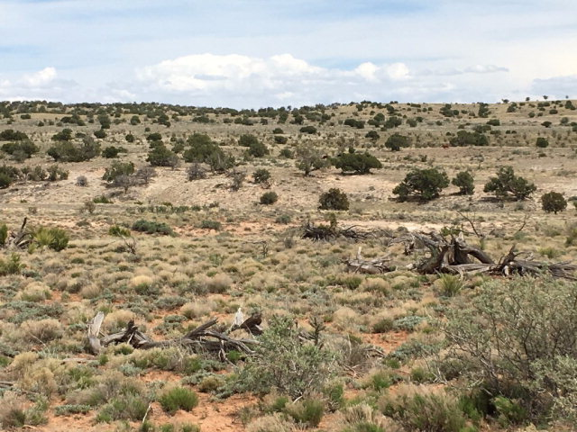 Lt. 69 Fence Line, Ancho NM 88301 - Photo 2