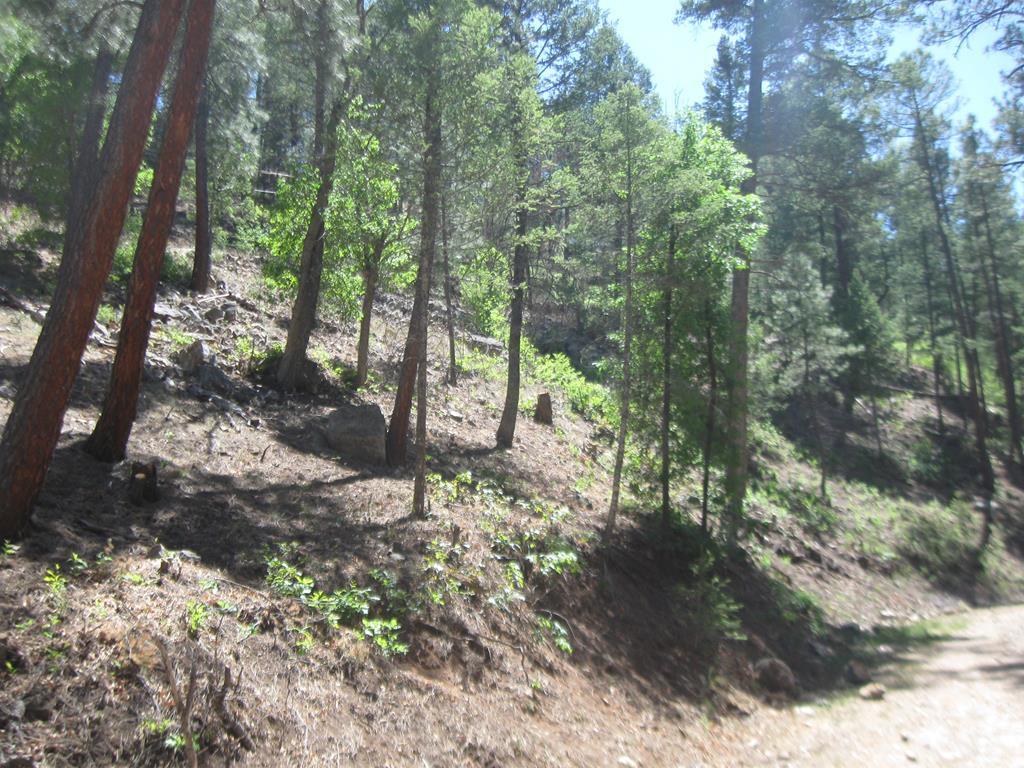 211 Camelot Drive, Ruidoso NM 88345 - Photo 1