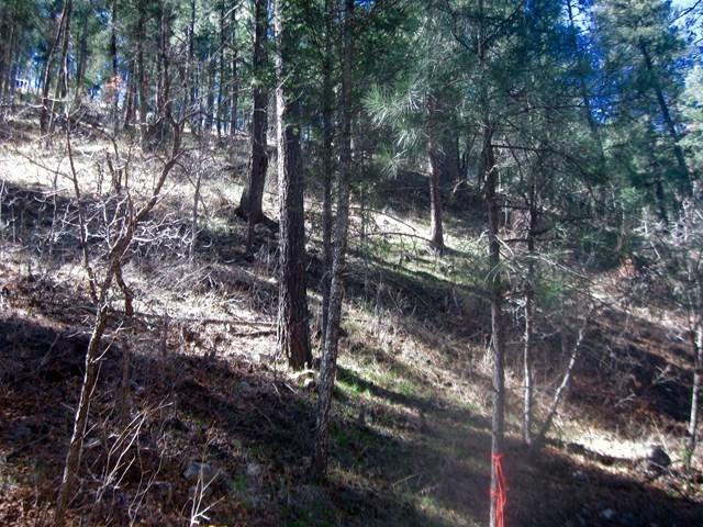 211 Camelot Drive, Ruidoso NM 88345 - Photo 2