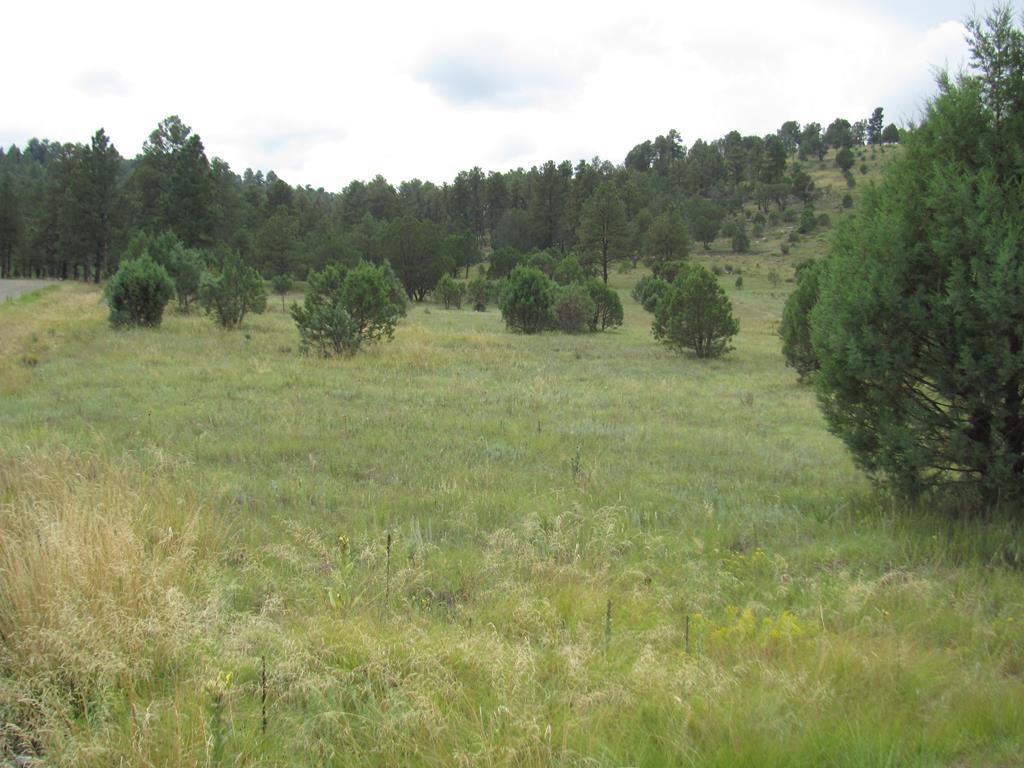 134 Deer Valley Drive, Alto NM 88312 - Photo 1