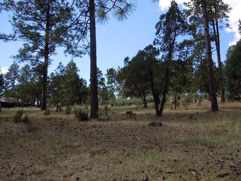 304 High Mesa Drive # 3, Alto NM 88312