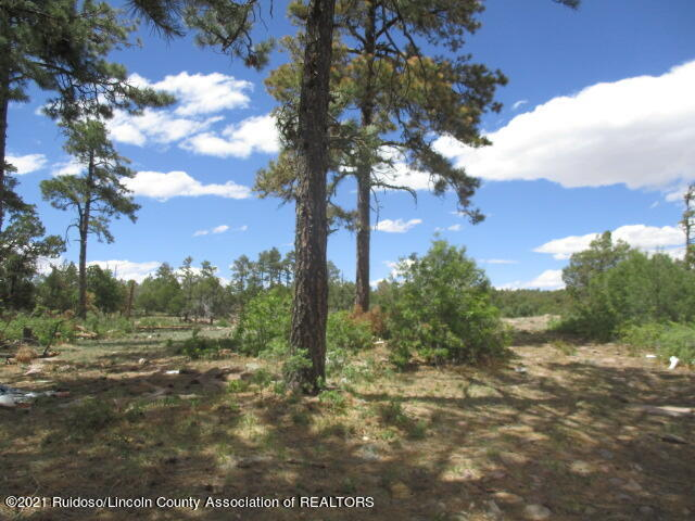 280 Indian Divide Rd, Capitan NM 88316 - Photo 1