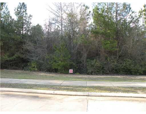 0 Sophia Way (lot 20) Culdesac, Pineville LA 71360