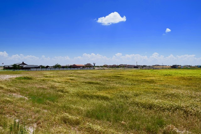 1234 Nw County Rd 41, Midland TX 79707 - Photo 1