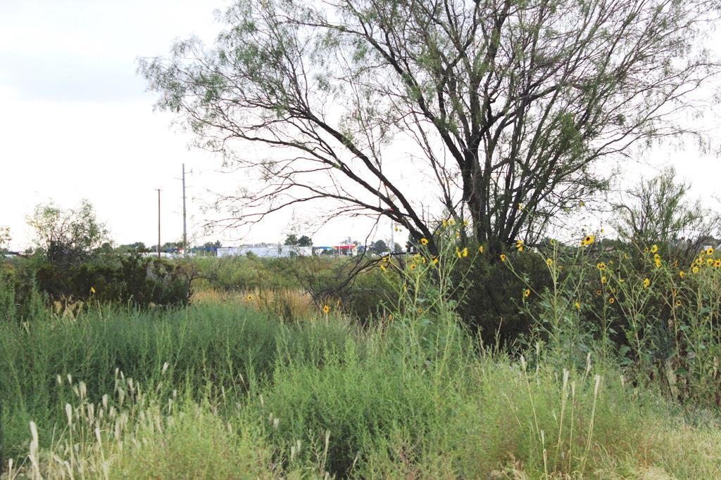 0 Sycamore, Fort Stockton TX 79735 - Photo 1
