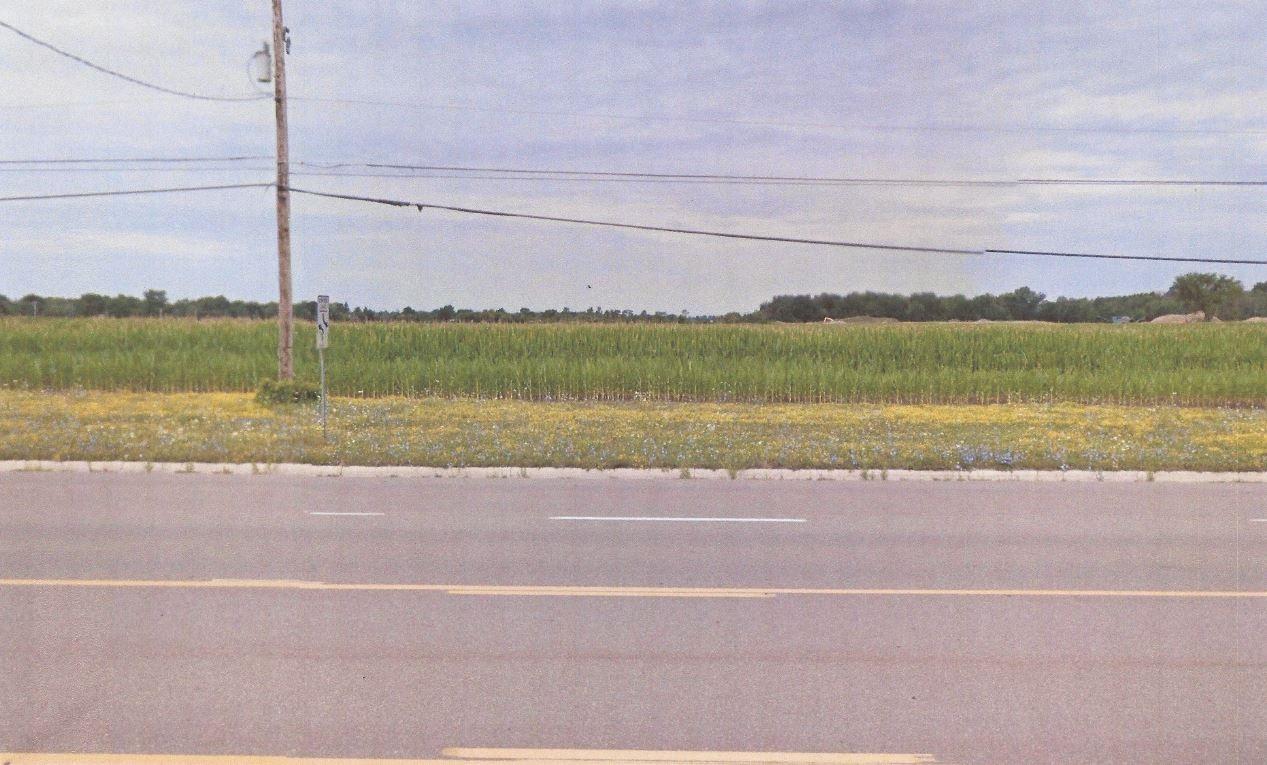 Corunna Road, Flint MI 48532 - Photo 2