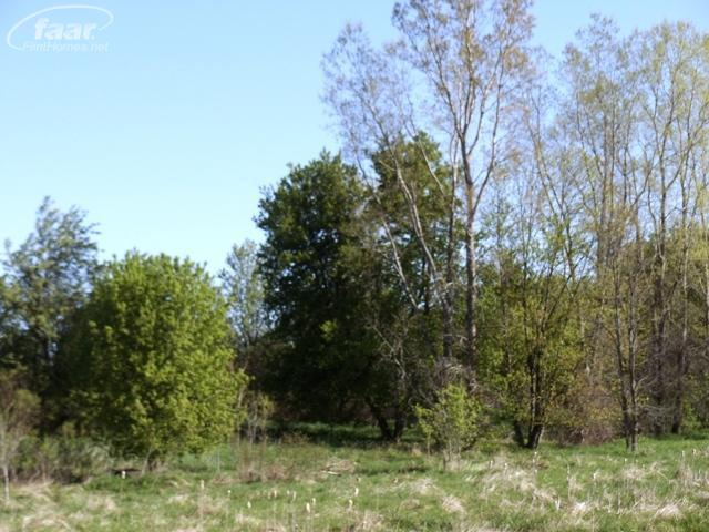 11185-11195 East Bristol Road, Davison MI 48423 - Photo 2