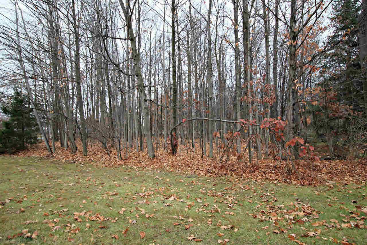 2291 Woods West Drive, Flushing MI 48433 - Photo 1