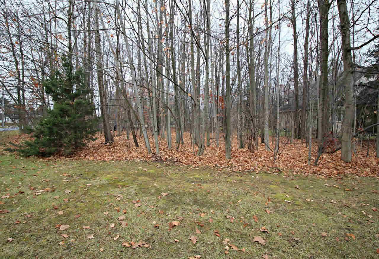 2291 Woods West Drive, Flushing MI 48433 - Photo 2