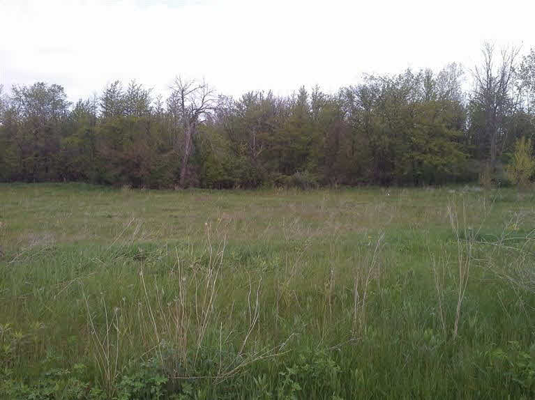 5220 Amelia Earhart Drive, Linden MI 48451 - Photo 1