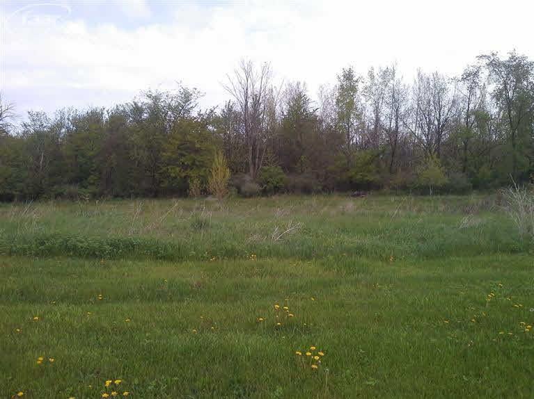 5202 Amelia Earhart Drive, Linden MI 48451 - Photo 1