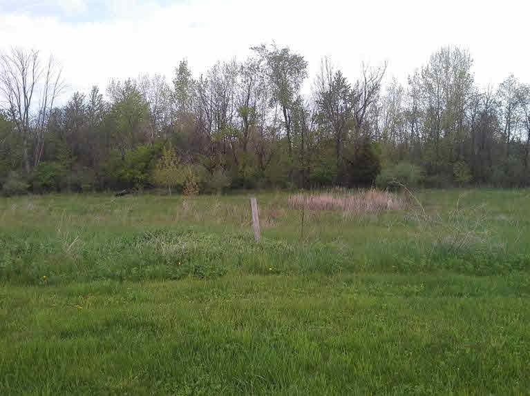 5194 Amelia Earhart Drive, Linden MI 48451 - Photo 1
