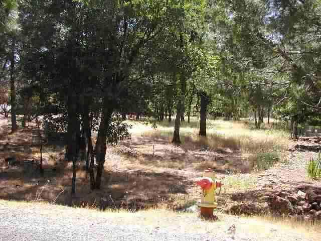 16336 David Way, Grass Valley CA 95949 - Photo 2