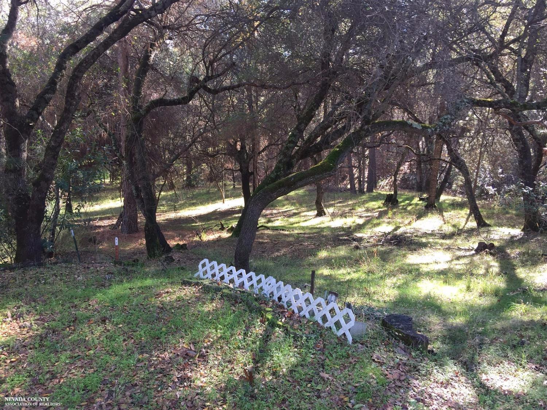 18813 Quiet Way, Penn Valley CA 95946 - Photo 1