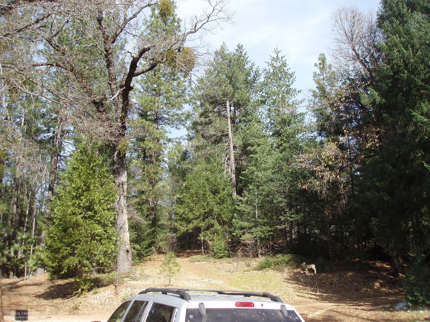 15666 Red Hill Springs Road, Nevada City CA 95959 - Photo 2