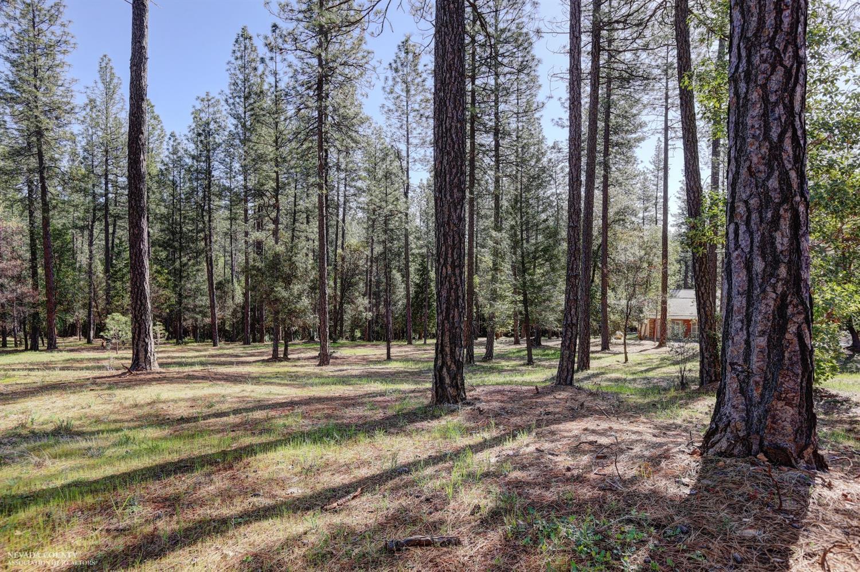 10424 Woods Ravine Court, Nevada City CA 95959 - Photo 1