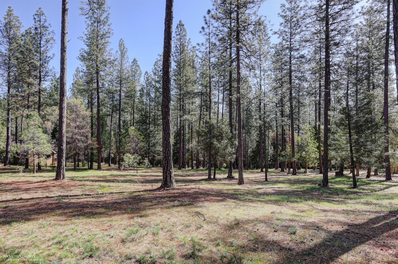 10424 Woods Ravine Court, Nevada City CA 95959 - Photo 2