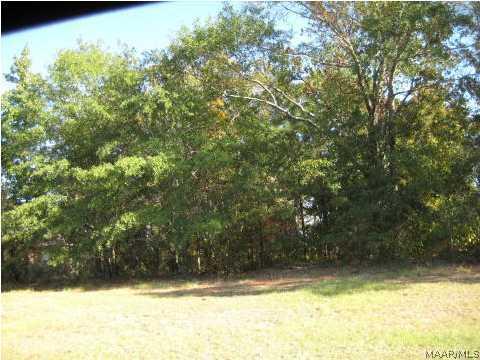 592 Mckeithen Place, Millbrook AL 36054 - Photo 1