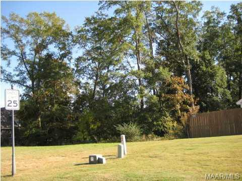 48 Macallister Ridge, Millbrook AL 36054 - Photo 1