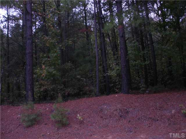 20 Pinestate Street, Lillington NC 27546 - Photo 1
