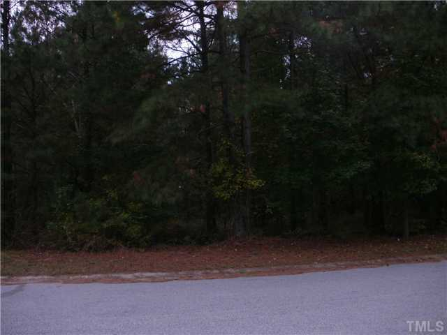 20 Pinestate Street, Lillington NC 27546 - Photo 2
