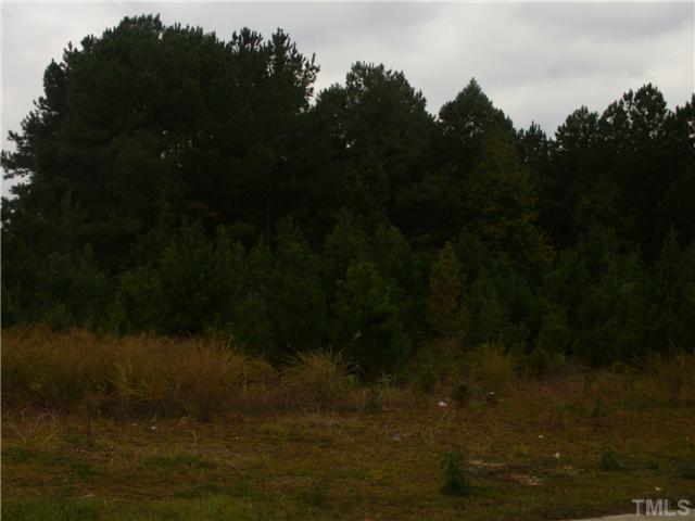 23 Pinestate Street, Lillington NC 27546 - Photo 2
