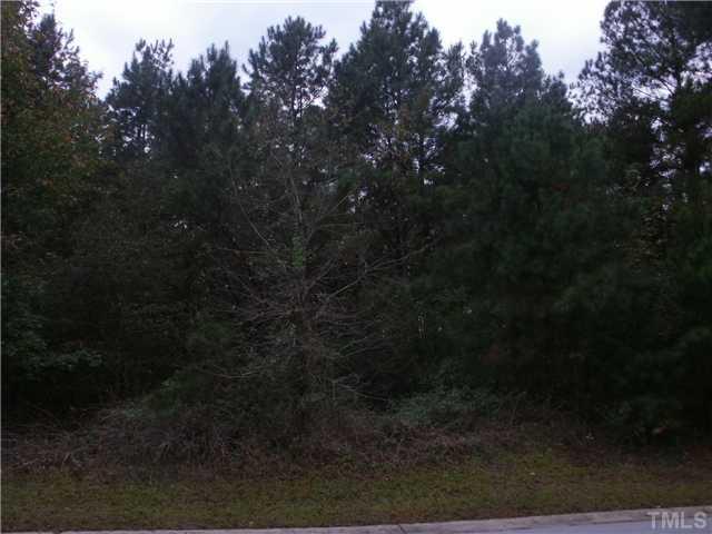 7 Pine State Street, Lillington NC 27546 - Photo 1