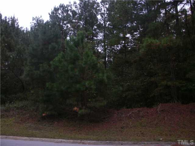 7 Pine State Street, Lillington NC 27546 - Photo 2