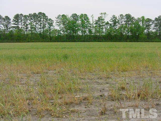 0 Industrial Drive, Bunnlevel NC 28323 - Photo 2
