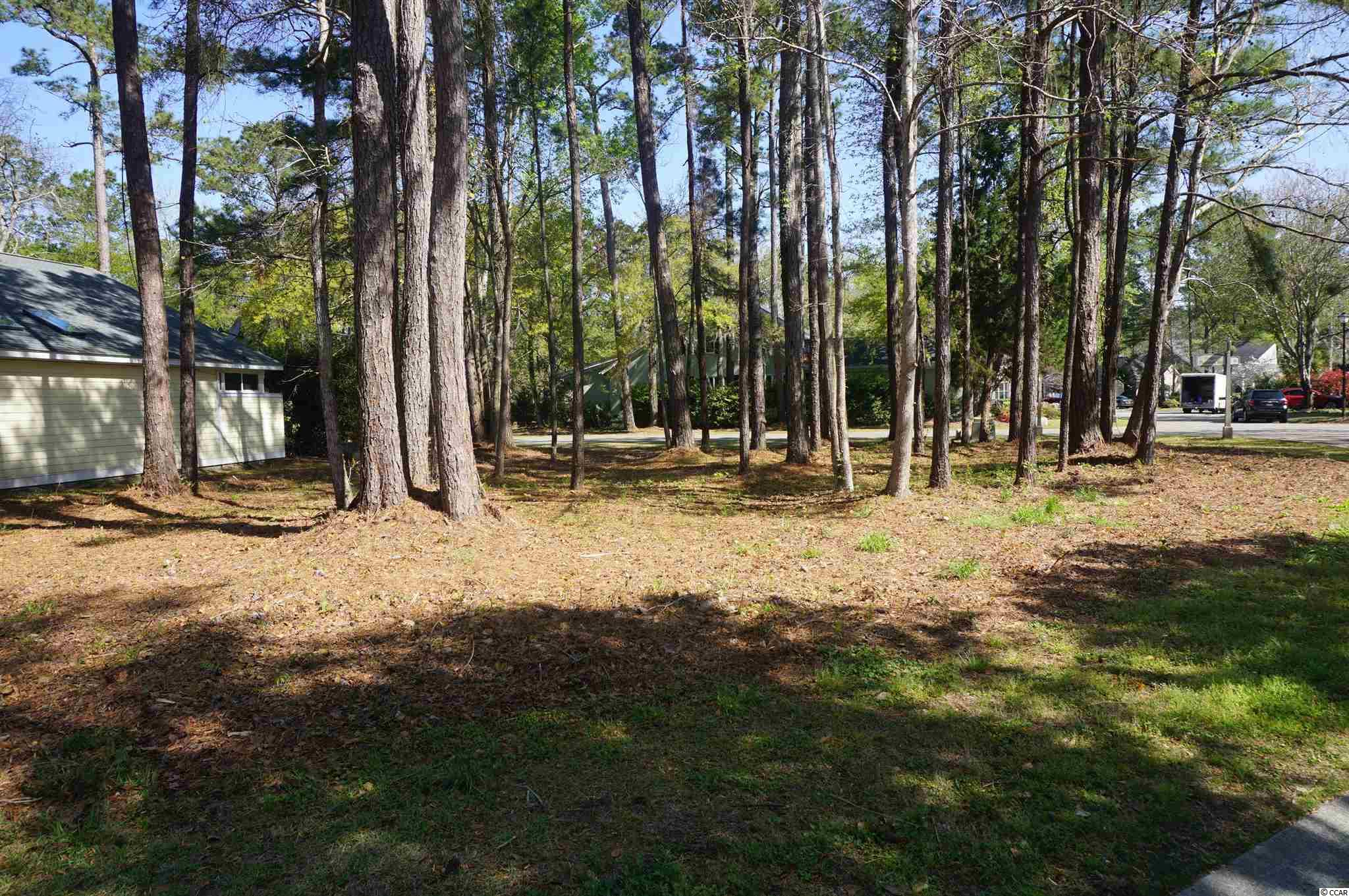 Lot 59 Redwing Ct, Pawleys Island SC 29585 - Photo 2