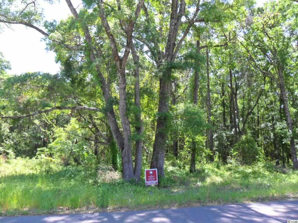 00 Parkersville Road, Pawleys Island SC 29585 - Photo 2