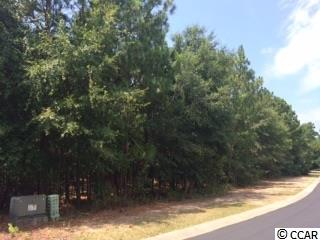 Lot 63 Ph 2 The Lot 63 The Reserve, Pawleys Island SC 29585