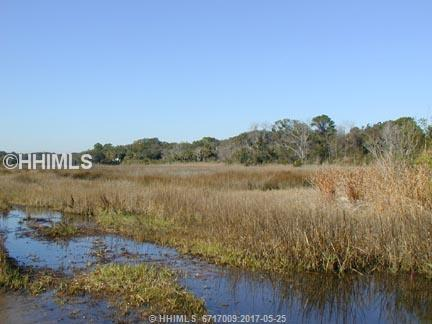 33 Mustang Lane, Hilton Head Island SC 29926 - Photo 2