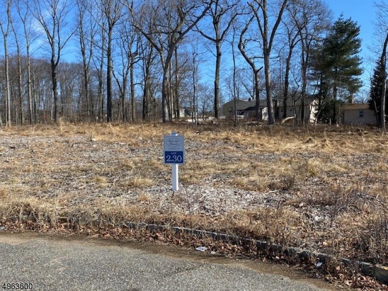 89 Force Hill Rd, Livingston Twp. NJ 07039 - Photo 1