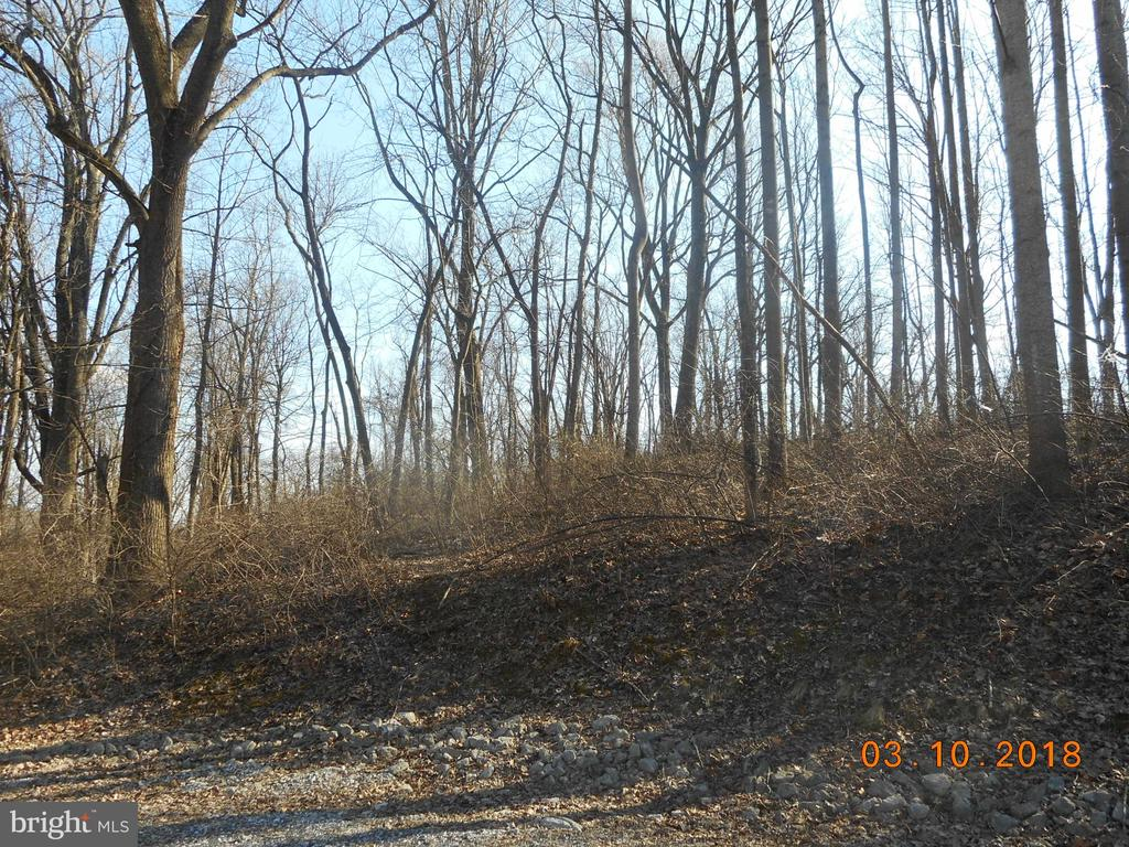 Country Club Trail, Fairfield PA 17320 - Photo 1