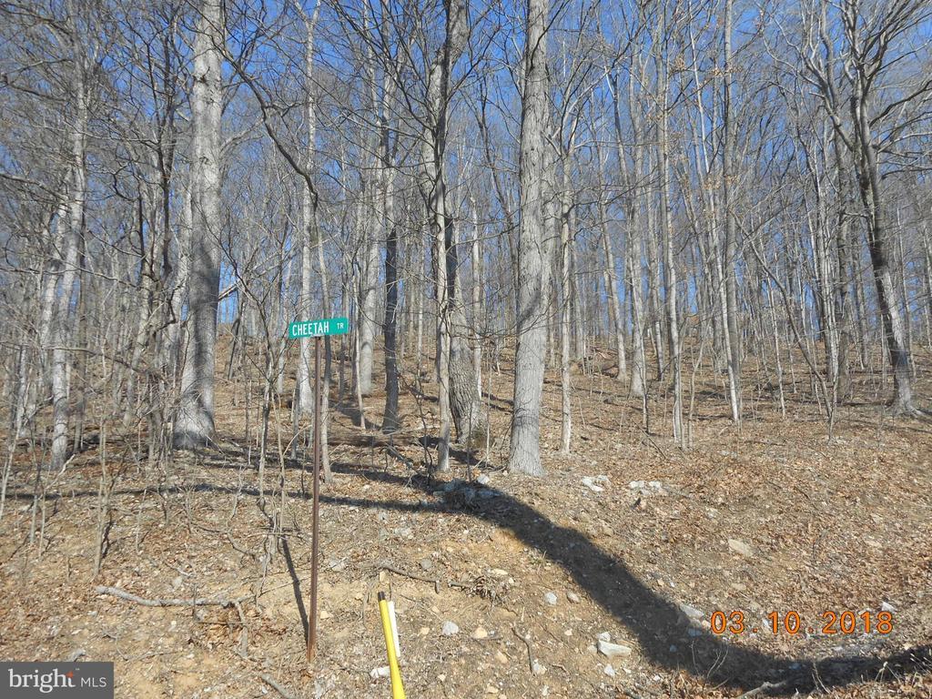 768 Country Club Trail, Fairfield PA 17320 - Photo 1