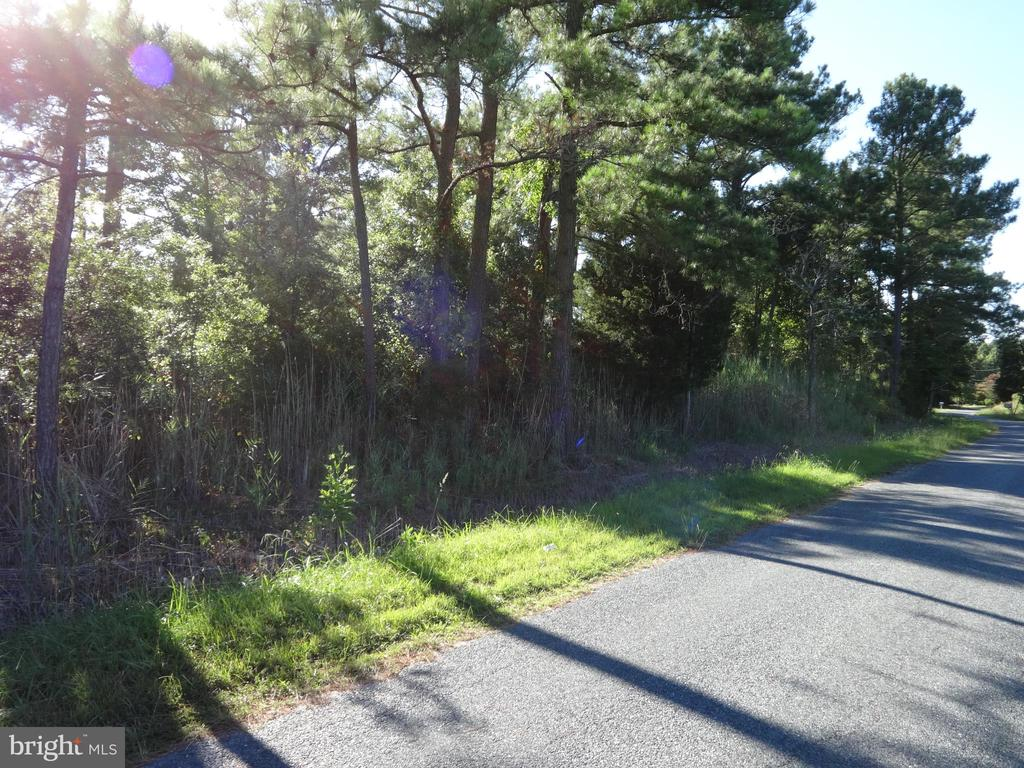 0 Lower Hill, Westover MD 21871 - Photo 1