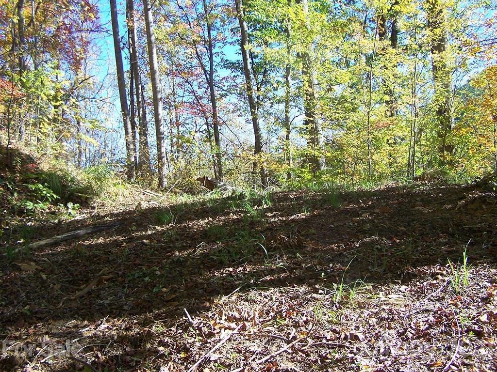 Lot 71 Running Deer Lane # -71, Mars Hill NC 28754