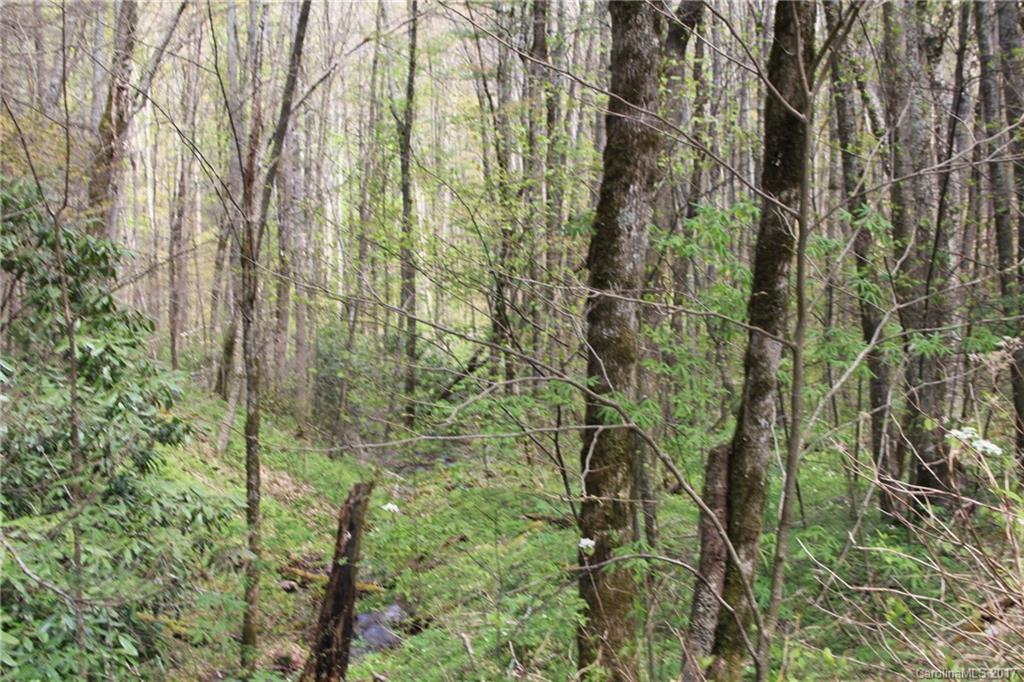 0000 Big Spring Trail # 61, Qualla NC 28719 - Photo 1
