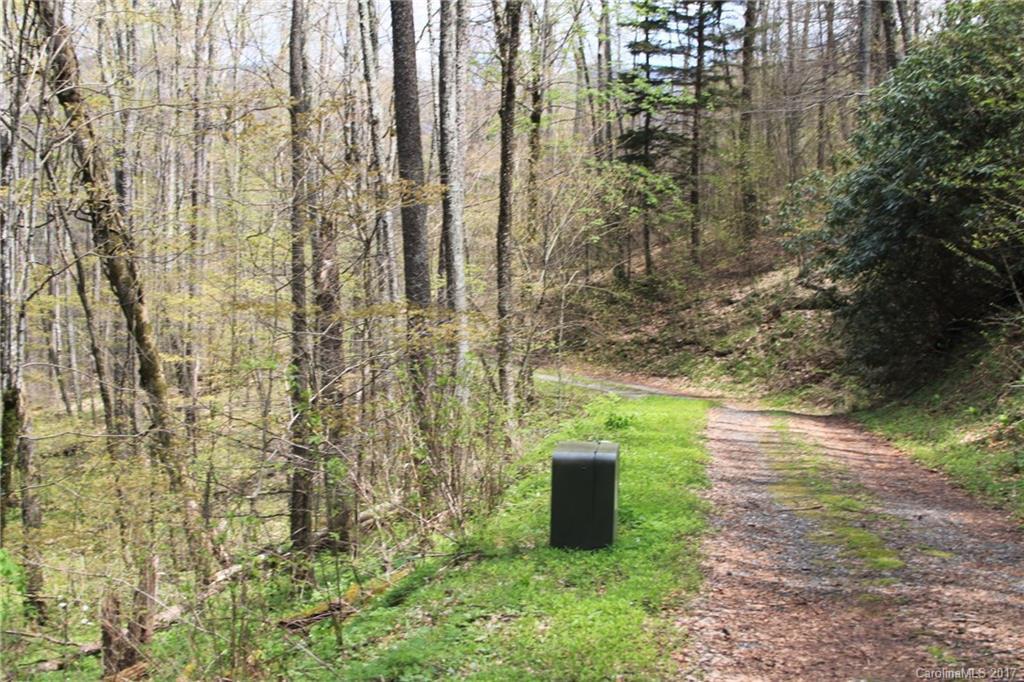 0000 Big Spring Trail # 61, Qualla NC 28719 - Photo 2