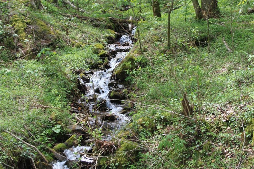 0000 Big Spring Trail # -61,69, Qualla NC 28719 - Photo 1