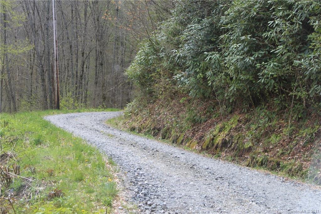 0000 Big Spring Trail # -61,69, Qualla NC 28719 - Photo 2