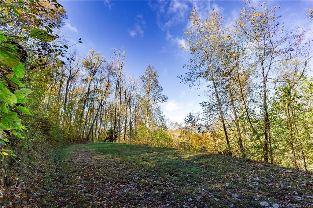 0000 Big Spring Trail # -65, Qualla NC 28719 - Photo 2