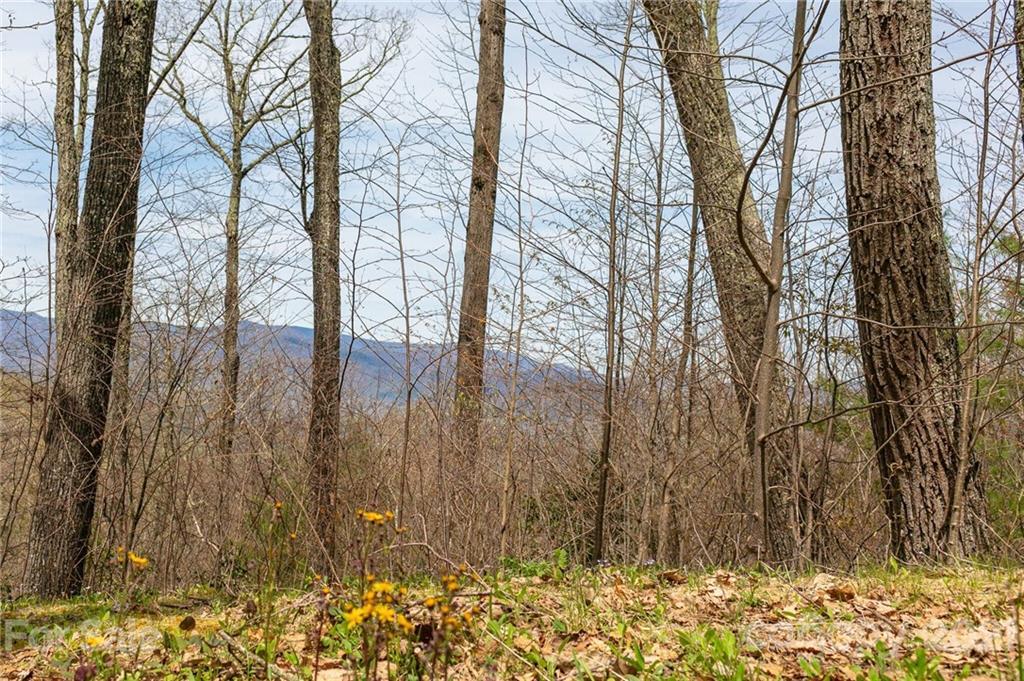 Lot 2 Heritage Ridge Loop, Burnsville NC 28714 - Photo 2