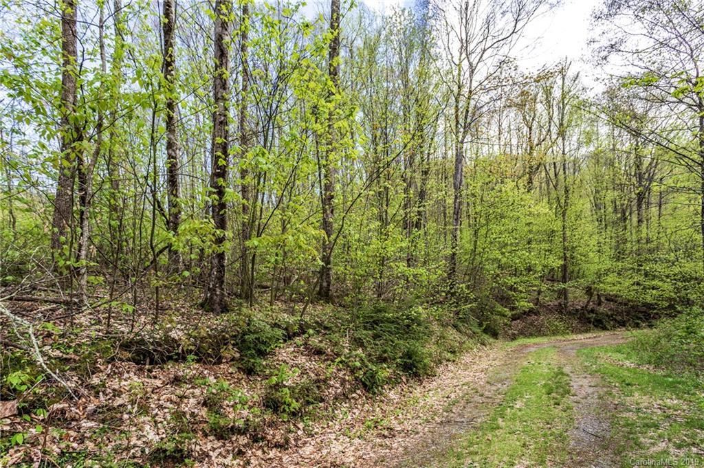 Lot 64 Big Springs Trail # -64, Qualla NC 28719 - Photo 1