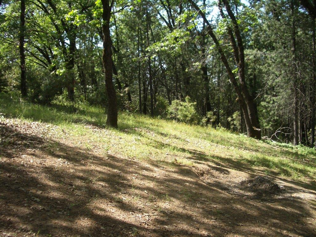 2420 Pleasant Valley Rd, Placerville CA 95667 - Photo 1