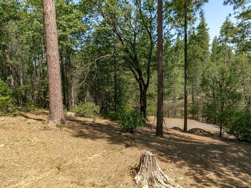 2420 Pleasant Valley Rd, Placerville CA 95667 - Photo 2