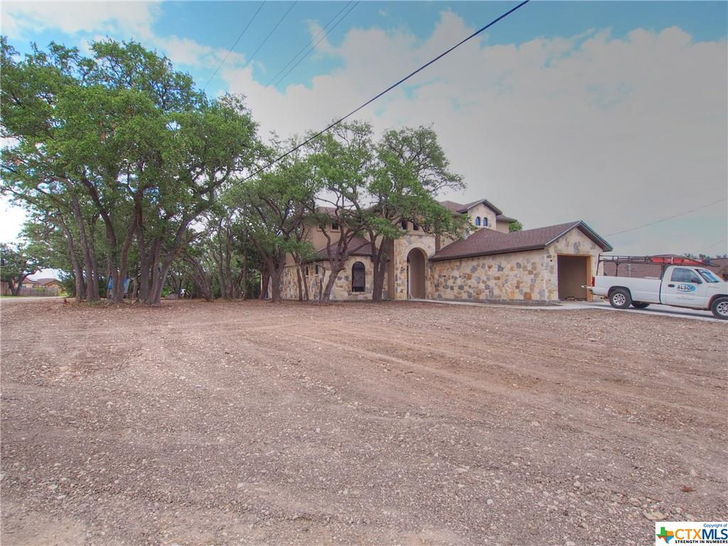 201 S Saw Grass Lane, Georgetown TX 78633 - Photo 1