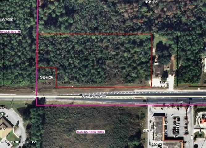 4112 Cr 218, Middleburg FL 32068 - Photo 1