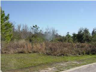 5161 Casa Grande Cir, Milton FL 32583 - Photo 1
